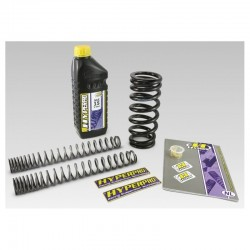 HYPERPRO Progressive Springs Kit for GL1800 01-17